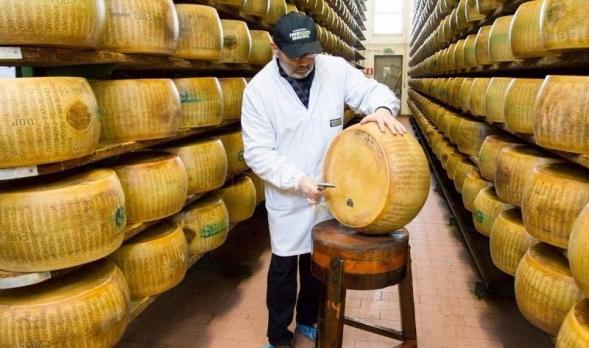 productor-de-queso-parmigiano-reggiano.jpg
